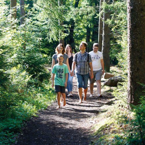 Dornstetter Freizeitsommer: Stadtwaldführung